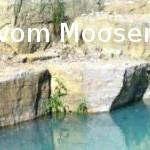 vom Mooser Bruch